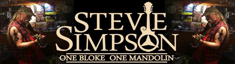STEViE One Bloke One Mandolin